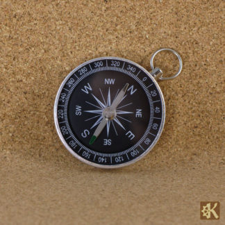 Kompass silberfarben